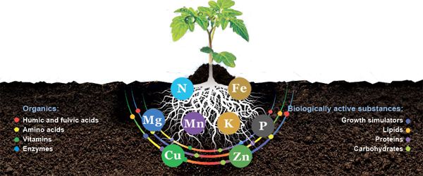 microelements for plant growth