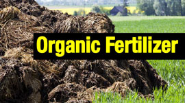 Worldwide Most Widely-Used Organic Fertilizer Production Process